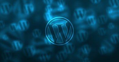 Admin WordPress, bonjour wordpress, howdy admin